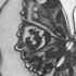 Schmetterling Black and Grey Tattoo